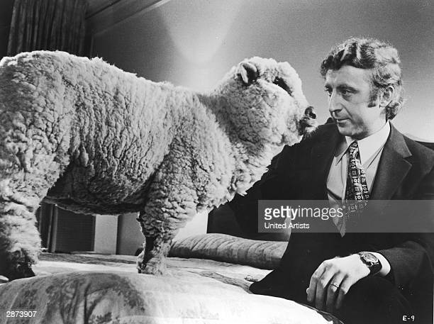 American actor Gene Wilder sits on a bed beside a sheep in a still from the film 'Everything You Always Wanted To Know About Sex But Were Afraid To...