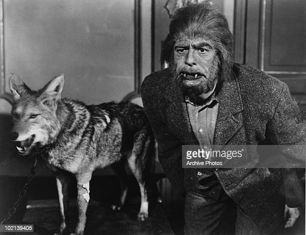 American actor Glenn Strange is transformed into a werewolf in the film 'The Mad Monster' 1942