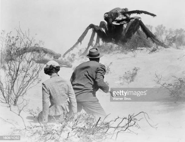 American actor James Arness protects actress Joan Weldon from a giant mutant killer ant in a scene from the film 'Them' 1954