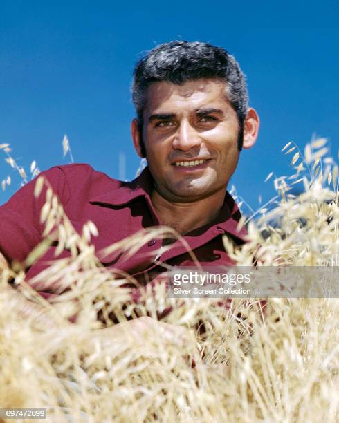 American actor Jeff Chandler poses in the long grass circa 1960