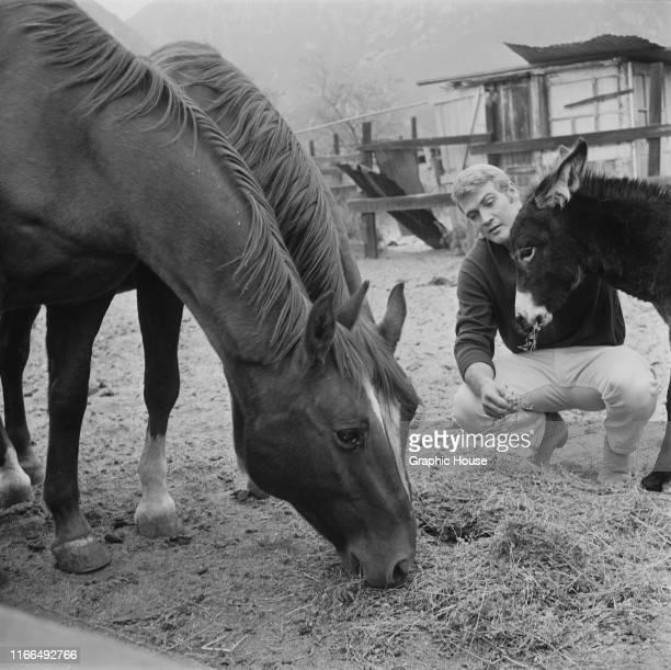 American actor Lee Majors at home on his ranch in Calabasas, California, circa 1965.