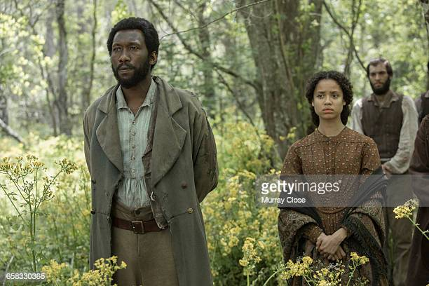 American actor Mahershala Ali and English actress Gugu Mbatha Raw filming 'Free State of Jones' in Louisiana USA April 2015 The film is based on the...