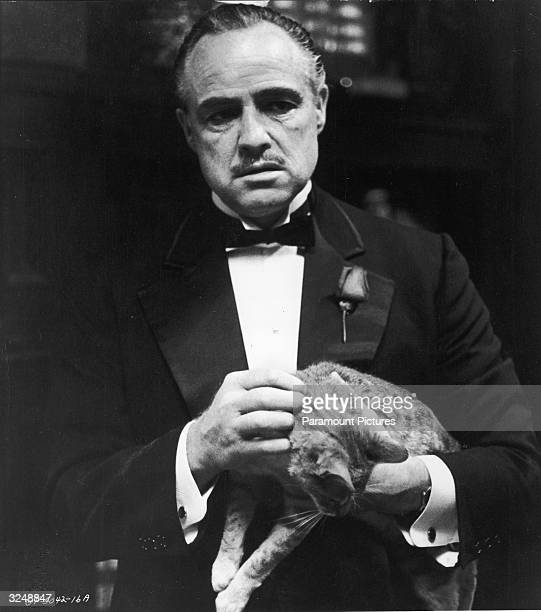 American actor Marlon Brando as Don Vito Corleone strokes a cat in a promotional still from the film 'The Godfather' directed by Francis Ford Coppola...