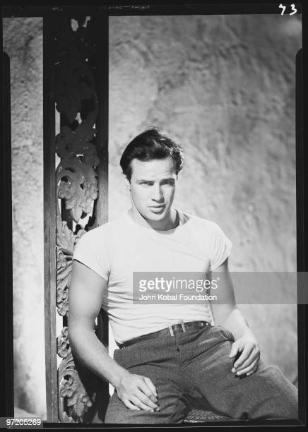 character analysis of stanley kowalski in the street car named desire by tennessee williams On the female sexual objectification in tennessee williams's  williams' a streetcar named desire based  of analysis down to stanley's character as.