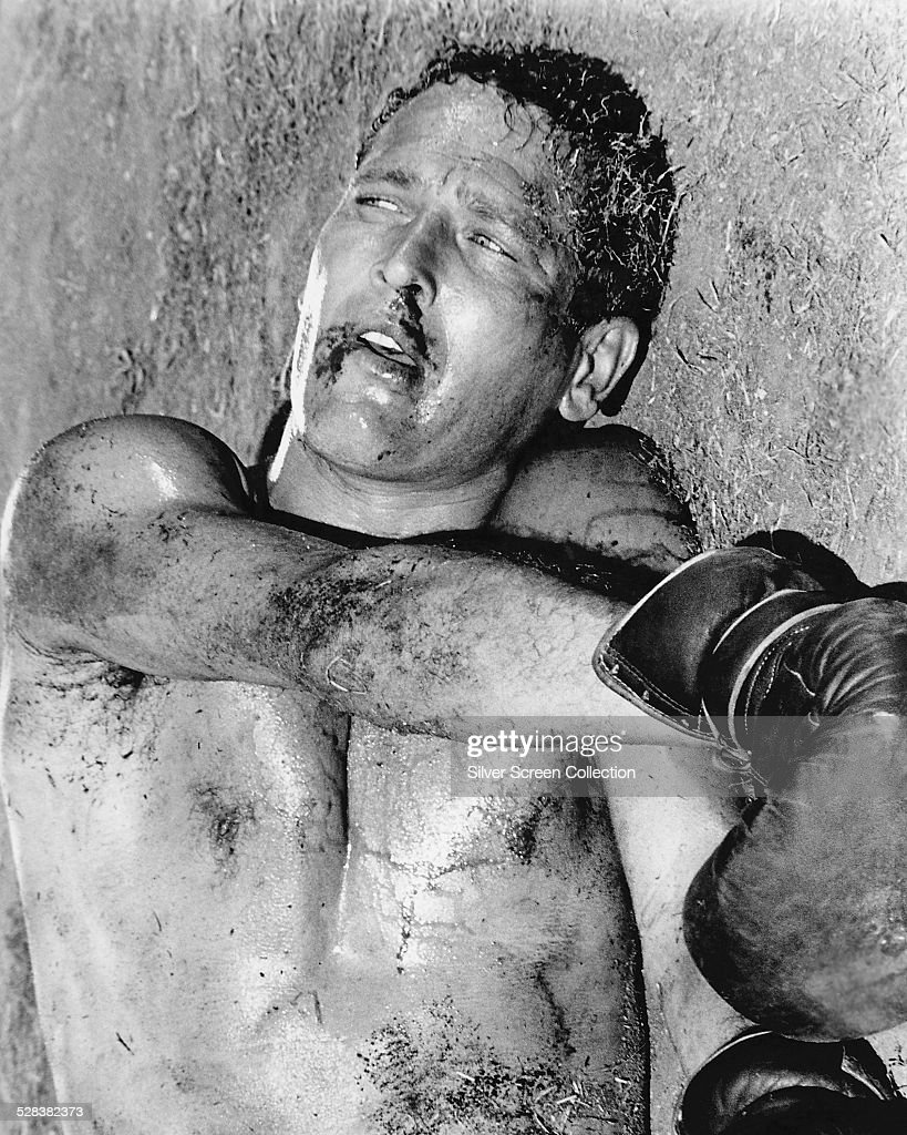 American Actor Paul Newman As Lucas Luke Jackson In Cool Hand