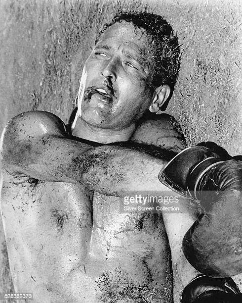 American actor Paul Newman as Lucas 'Luke' Jackson in 'Cool Hand Luke' directed by Stuart Rosenberg 1967
