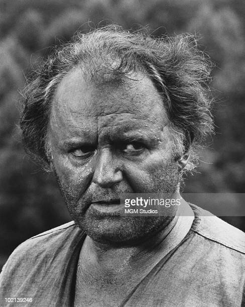 American actor Rod Steiger stars in 'LollyMadonna XXX' aka 'The LollyMadonna War' 1973