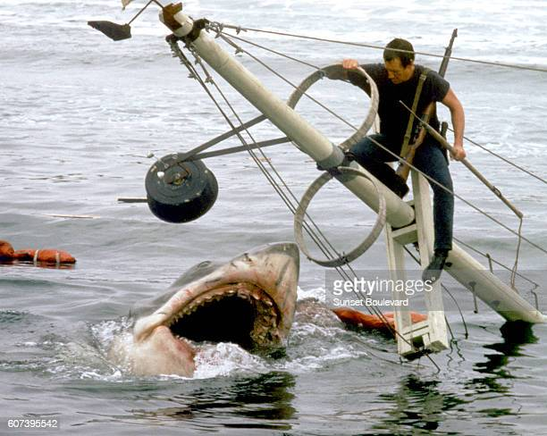 American actor Roy Scheider on the set of Jaws directed by Steven Spielberg