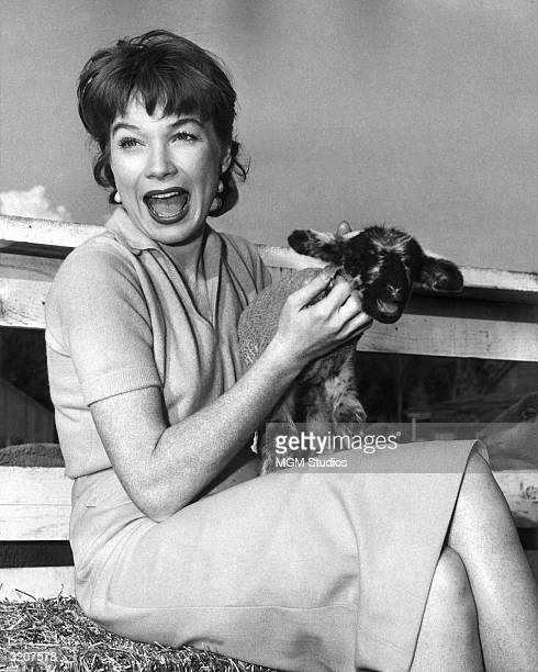 American actor Shirley MacLaine laughs and holds a baby lamb in her lap sitting next to a sheep corral on the set of director George Marshall's film...