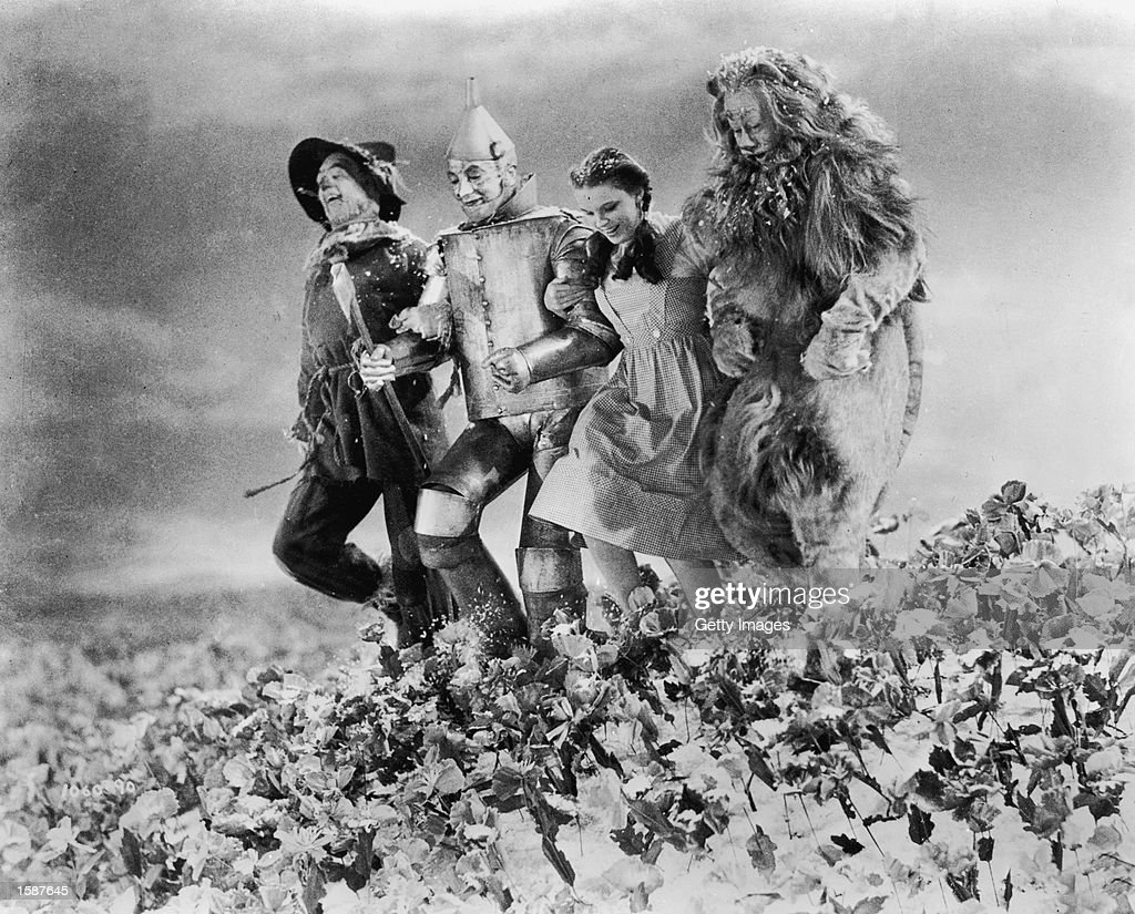 American actors (left - right) Ray Bolger (1904 - 1987), Jack Haley (1898 - 1979), Judy Garland (1922 -1969), and Bert Lahr (1865 - 1967) run arm in arm through a field of poppies in a still from the film, 'The Wizard of Oz,' directed by Victor Fleming, 1939.
