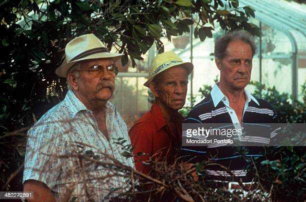 American actors Wilford Brimley Hume Cronyn and Don Ameche acting in a greenhouse in the film Cocoon 1985