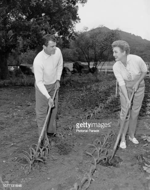 American actress and comedian Eve Arden tends the kitchen garden on her farm with her husband Brooks West circa 1955