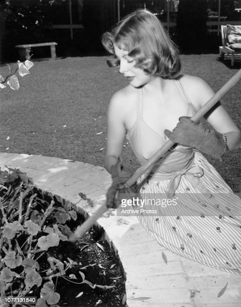 American actress Arlene Dahl tends a bed of geraniums in her garden circa 1950