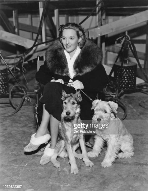 American actress Astrid Allwyn keeps on the lead her two Schnauzer dogs, Till Eulenspiegel and Gretchen, on set, November 1936.