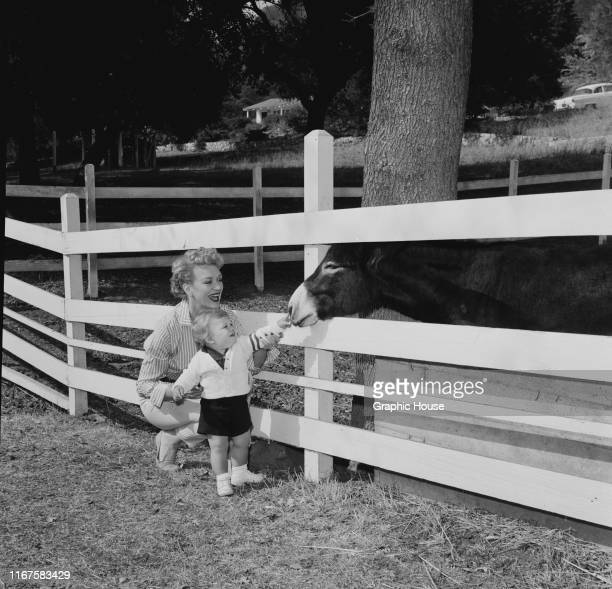 American actress Eve Arden introduces her son Douglas to a donkey circa 1960