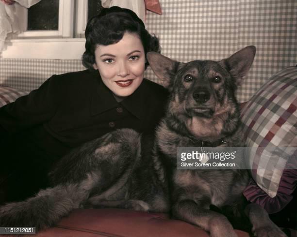 American actress Gene Tierney with an Alsatian circa 1950