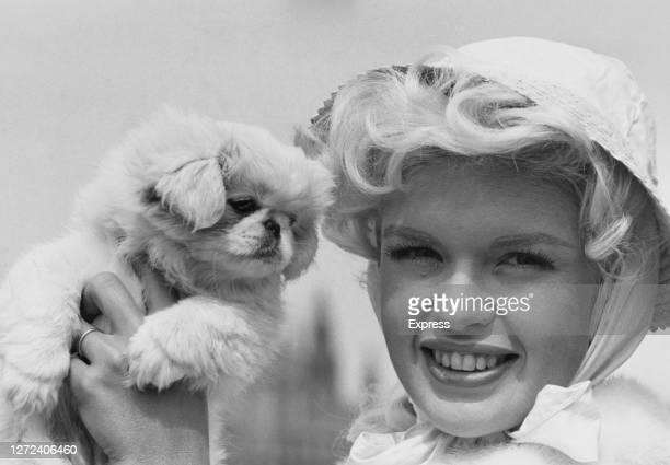 American actress Jayne Mansfield holding her Pekingese pet dog 'Powder Puff' on the set of film 'Too Hot Too Handle' on Lambeth Pier, London, UK,...