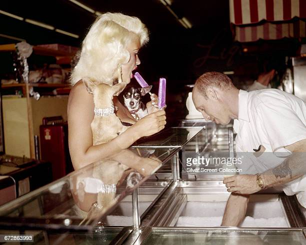 American actress Jayne Mansfield out buying ice cream with her dogs in Las Vegas USA 1959