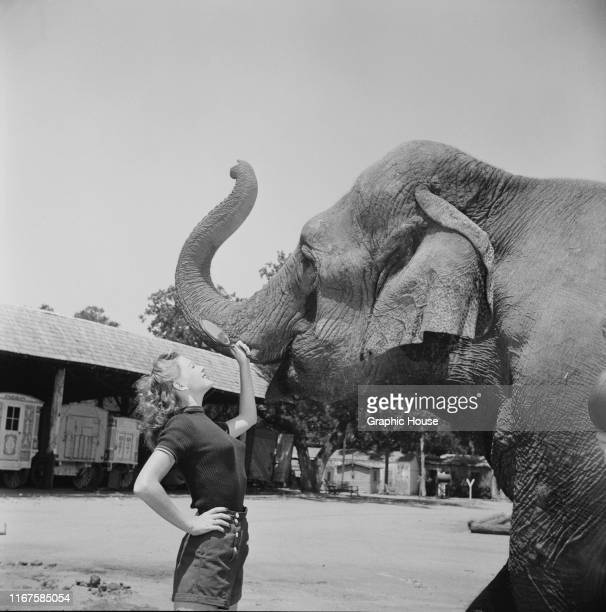 American actress Joan Vohs holds up a mirror for an elephant circa 1955
