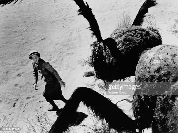 American actress Joan Weldon as Dr Patricia Medford being terrorised by a giant mutant killer ant in a scene from the film 'Them' 1954