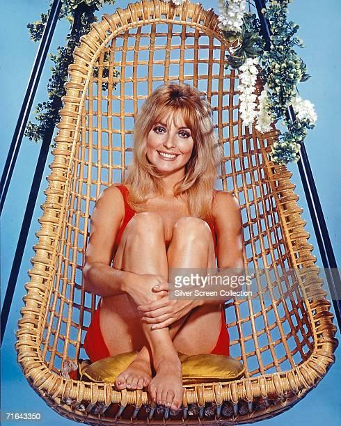 American actress Sharon Tate in a wicker swing-chair, circa 1968.
