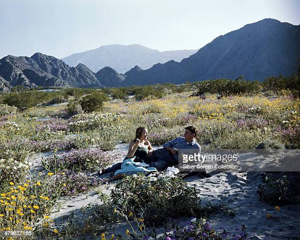 American actress Terry Moore enjoying a picnic in the mountains with American actor Jerome Courtland circa 1951