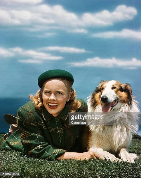 American actress Terry Moore with a Rough Collie Los Angeles California 1949