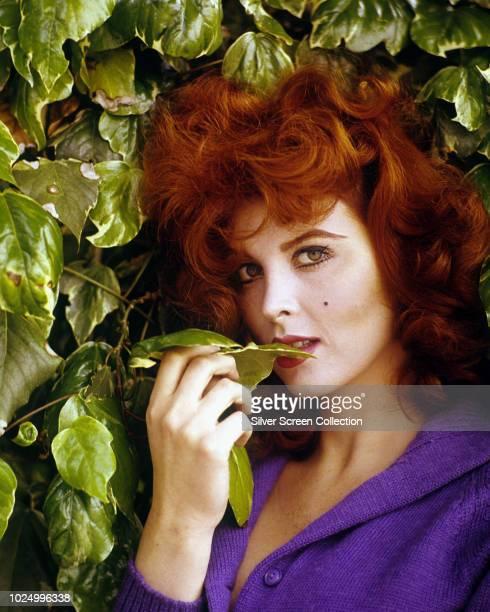 American actress Tina Louise circa 1965