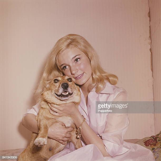 American actress Yvette Mimieux who appears in the film 'The Time Machine' pictured holding a small dog in London in 1962