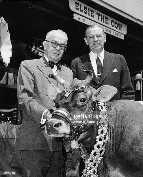 American advertising icon Elsie The Cow at a Borden annual meeting in Flemington NJ with Borden board chairman Theodore Montague and Borden President...