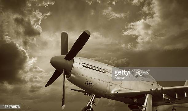 American Aircraft P-51 Mustang