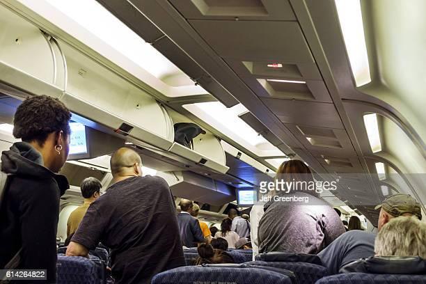 American Airlines cabin interior
