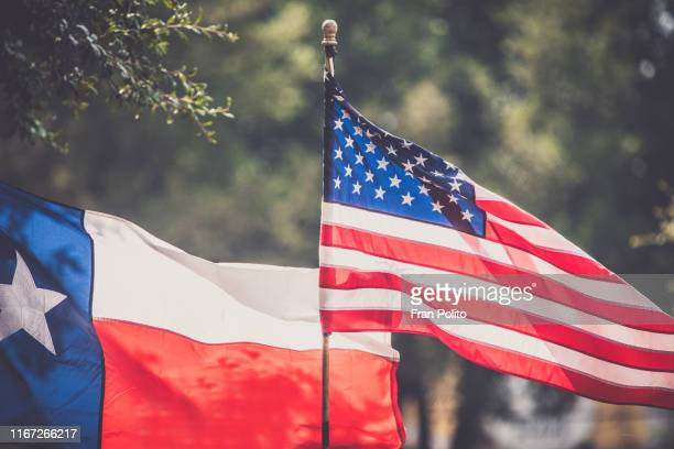 american and texas flags. - fort worth stock pictures, royalty-free photos & images