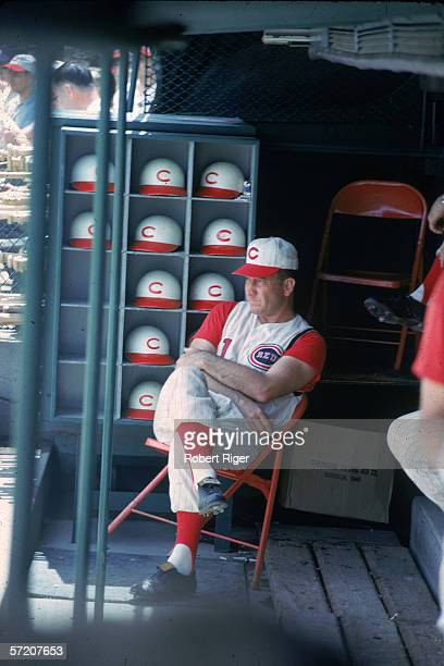 American baseball manager and former professional baseball player Fred Hutchinson manager for the Cincinnati Reds sits in the dugout with his legs...