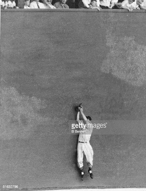 American baseball player Stan Musial, outfielder for the St. Louis Cardinals, catches a line drive at the wall at the Polo Grounds, New York, New...