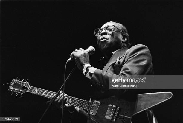 American blues guitarist Albert King performs at the North Sea Jazz Festival in the Hague the Netherlands on 14th July 1989
