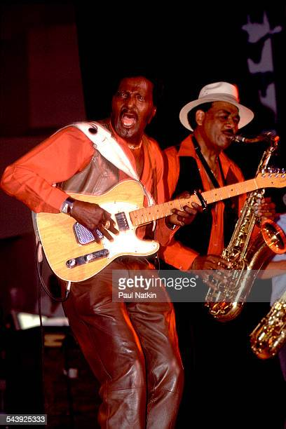 American blues musician Albert Collins performs at the Park West auditorium Chicago Illinois April 2 1981
