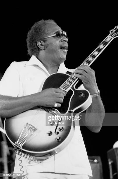 American Blues musician Fenton Robinson performs onstage at the Petrillo Bandshell Chicago Illinois June 8 1985