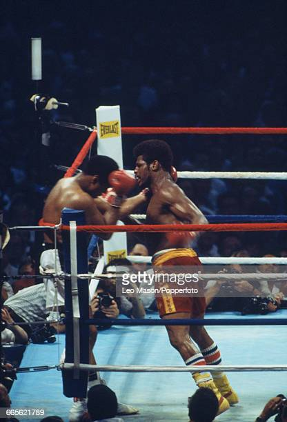 American boxer Muhammad Ali pictured left in white shorts on the ropes during his fight against fellow American boxer Leon Spinks in red shorts at...
