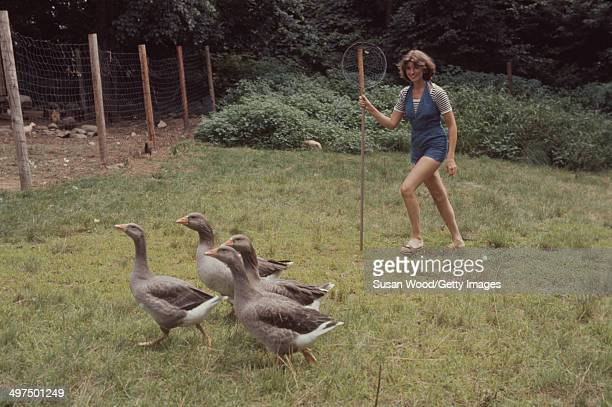 American businesswoman Martha Stewart carries a net as she herds geese on the grounds of her home Westport Connecticut August 1976