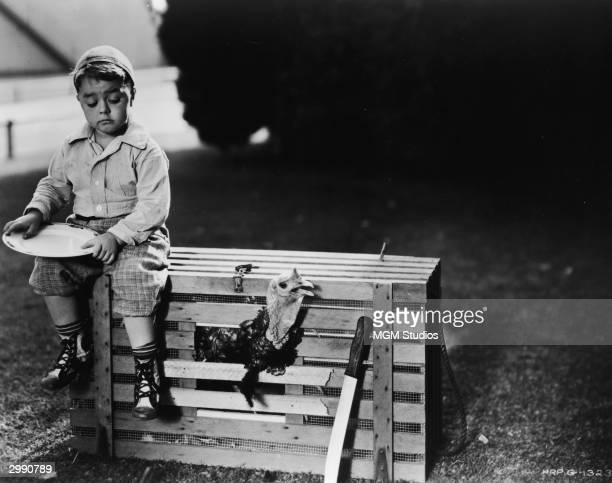 American child actor George McFarland sits on top of a rooster cage in a still from the television series 'The Little Rascals' which was based on the...