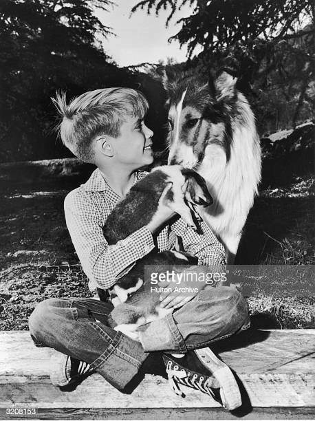 American child actor Jon Provost holds Collie puppies his lap while sitting with Lassie in a promotional portrait for the TV show, 'Lassie'.