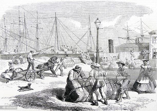 American Civil War Unloading bales of cotton at Nassau Bahamas brought from the southern states by blockade runners Woodcut 1864 Shortage of American...