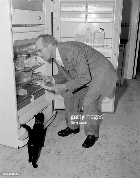 American comedian and actor Groucho Marx bends down to look in the fridge while a black cat eagerly watches 1940s