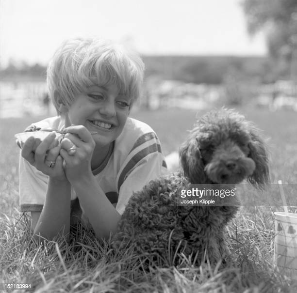 American dancer and dance instructor, and future actress, Goldie Hawn, dressed om a football jersey, lies on the grass and eats ice cream as she...