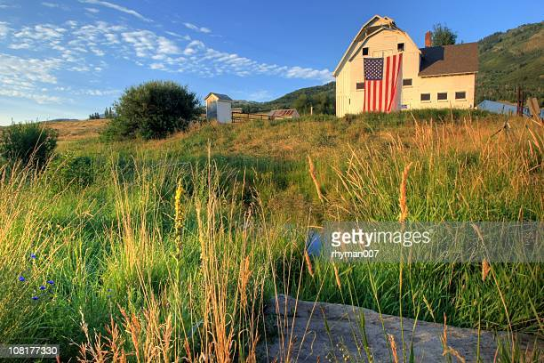 American farm with giant flag in field