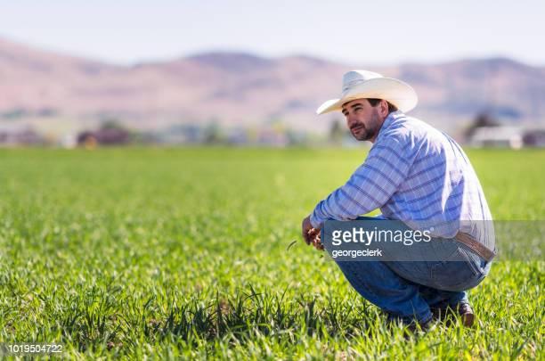 Granjero americano en un campo cultivado