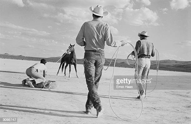 American film actors Clark Gable Eli Wallach and Montgomery Clift roping a horse on location in the Nevada Desert during the filming of John Huston's...