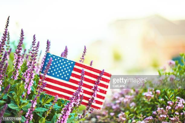 american flag in nature with copy space - labor day stock pictures, royalty-free photos & images