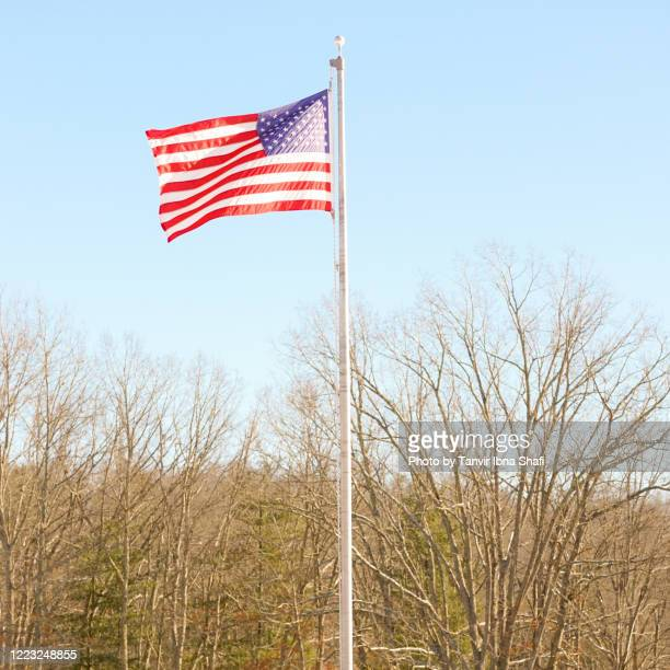 american flag in the wind - florida us state stock pictures, royalty-free photos & images